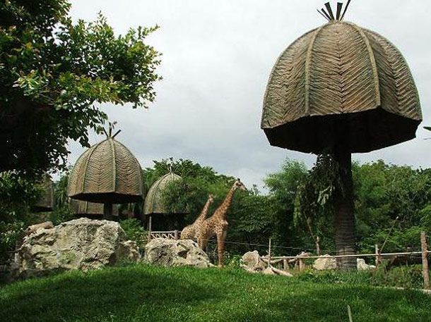 Thailand Zoos
