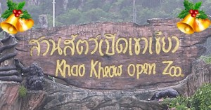 Merry Christmas & Happy Holidays from Khao Kheow Open Zoo