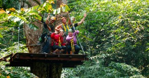 jungle Canopy Adventure Tour