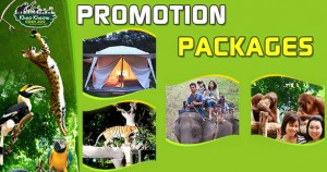 jttj-promotion-packages