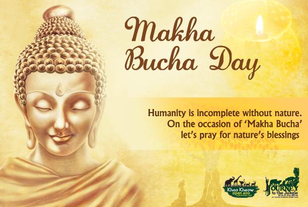Happy Makha Bucha Festival