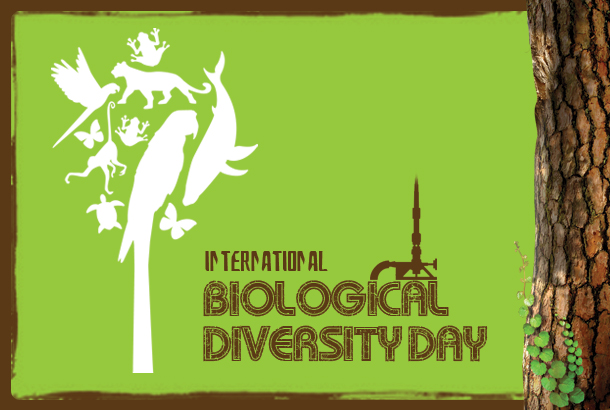 Biological Diversity Day
