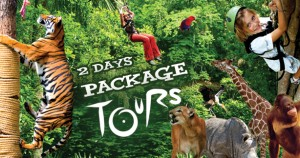 2 Dyas 1 Nights Eco Tours