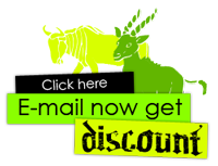 E-mail now get discount
